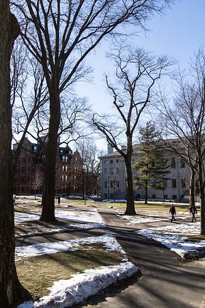 Quad, Harvard