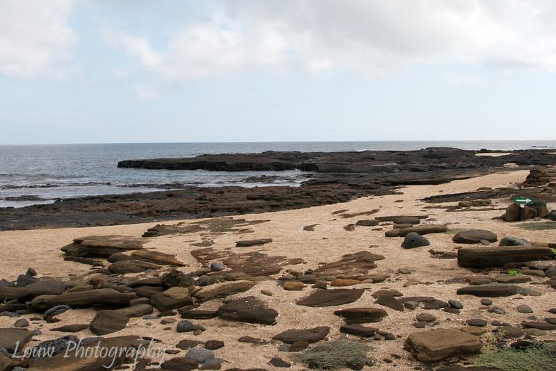 "Puerto Egas, Santiago, <a target=""NEWWIN"" href=""http://en.wikipedia.org/wiki/Gal%C3%A1pagos_Islands"">Galápagos Islands</a>"