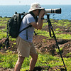 "Genovesa, <a target=""NEWWIN"" href=""http://en.wikipedia.org/wiki/Gal%C3%A1pagos_Islands"">Galápagos Islands</a>"