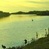 Sun rise over the Estuary