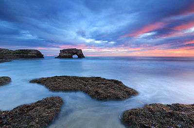 Natural Bridges state park, Santa Cruz, USA