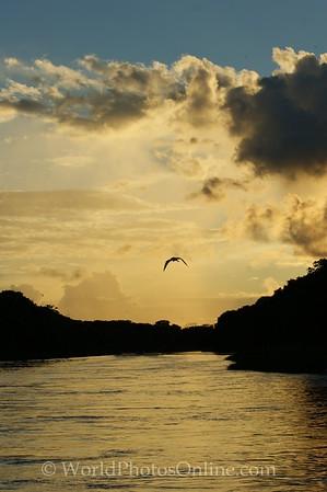 Amazon River - Sunset 2