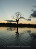 Amazon River - Sunset 4