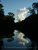Amazon River - Black Water Stream