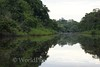 Amazon River - Black Water Tributary