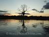 Amazon River - Sunset 1
