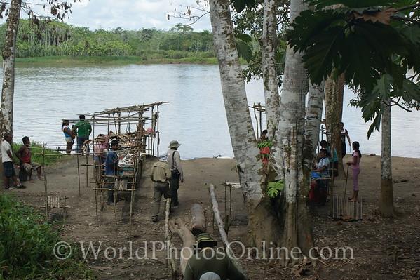 Amazon River - Terra Firma Jungle Walk - Jungle Fair