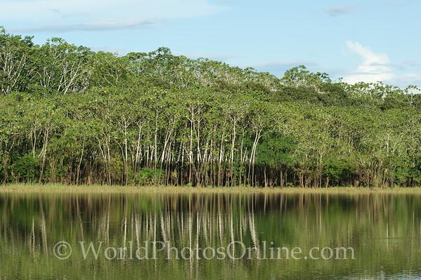 Amazon River - Black Water Lake