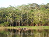 Amazon River - Black Water Lake 2