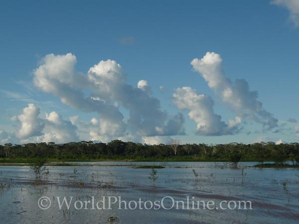 Amazon River - Thunderhead 3