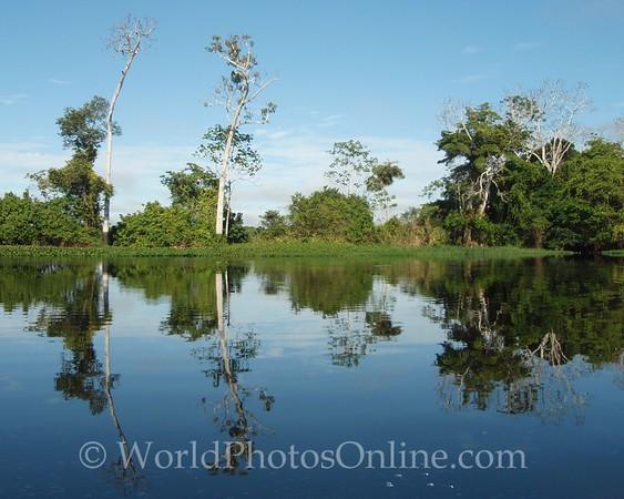 Amazon River - Scene 1