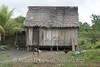 Amazon River - Village of Cedro Isla - House 2