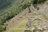 Inca Trail - Hiking the Inka Trail 1