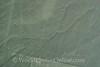 Nazca Lines - Misc Lines