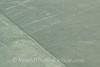 Nazca Lines - Heron Bird