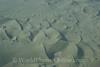 Nazca Desert 1