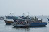 Paracas - Harbor 2