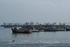 Paracas  - Harbor 1