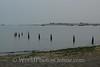 Bay of Paracas - 10 birds & 10 piers