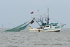 Coastal Shrimpers