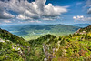 View from the swinging bridge atop Grandfather Mountain - Linville, NC - Blue Ridge Mountain range