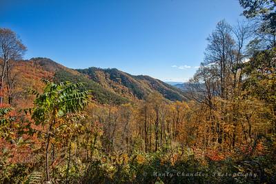Mt Mitchell State Park ride