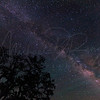 Milky Way 5956  w21