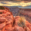 Sunrise Starburst - Toroweap Point - Grand Canyon  6015  w22