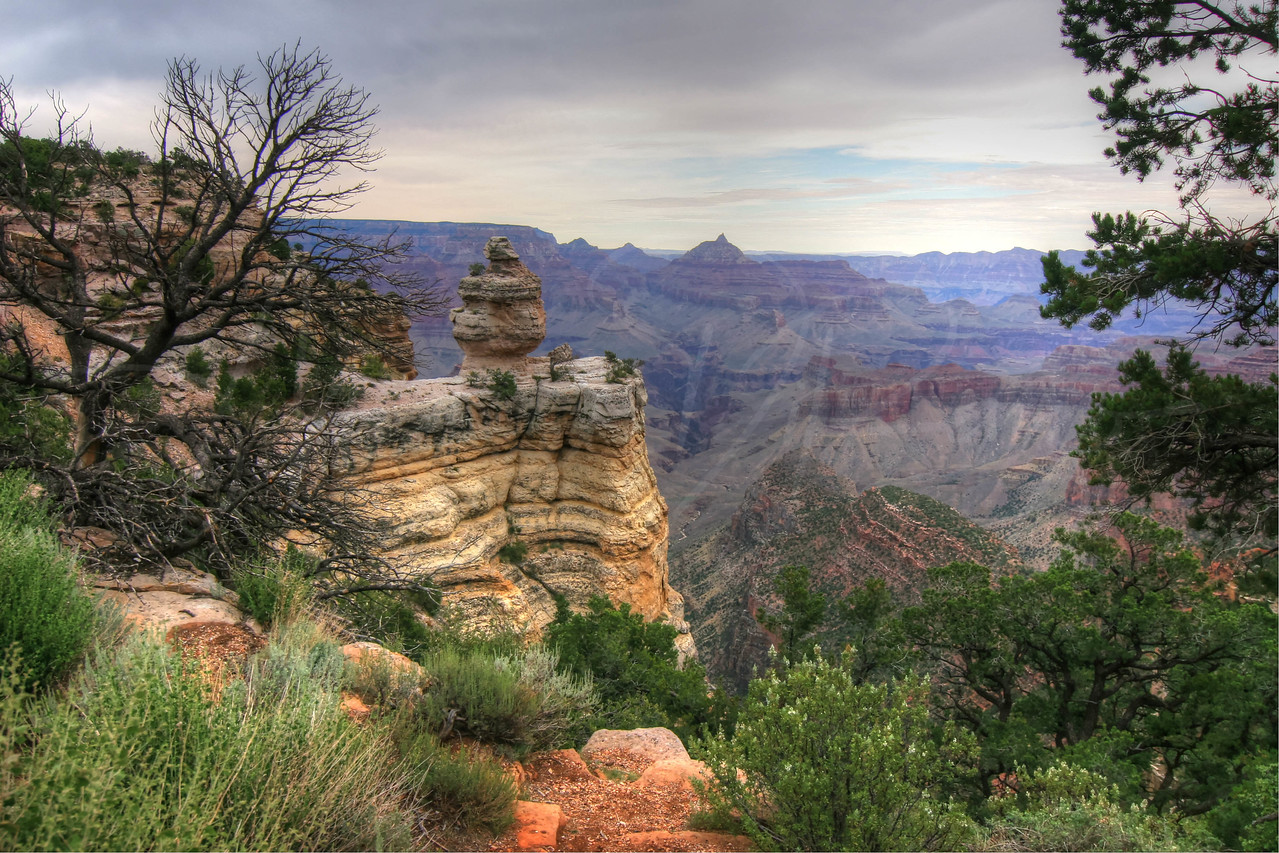 Grand Canyon - South Rim  3673  w25