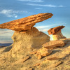 Stud Horse Point Toadstool Hoo Doo  3983   w21