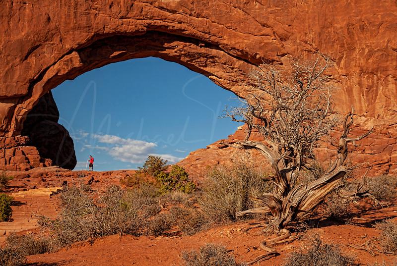 South Window Arch  2412 w62