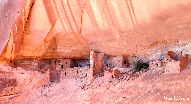 Anasazi Ruins at Poncho House  8506  w25