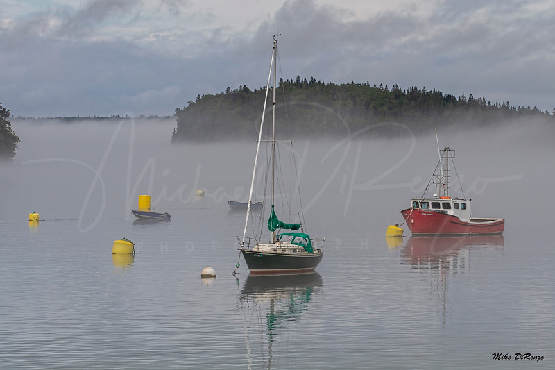 Foggy Harbor 0524 w63