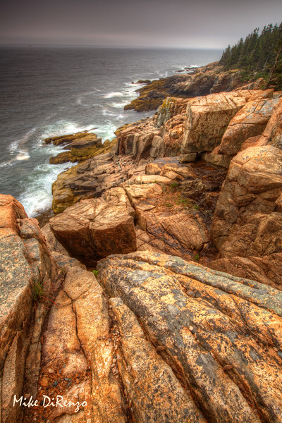Otter Cliffs - Acadia National Park   8861    w21