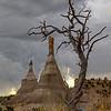 Chaco Canyon Twins  2309 w64