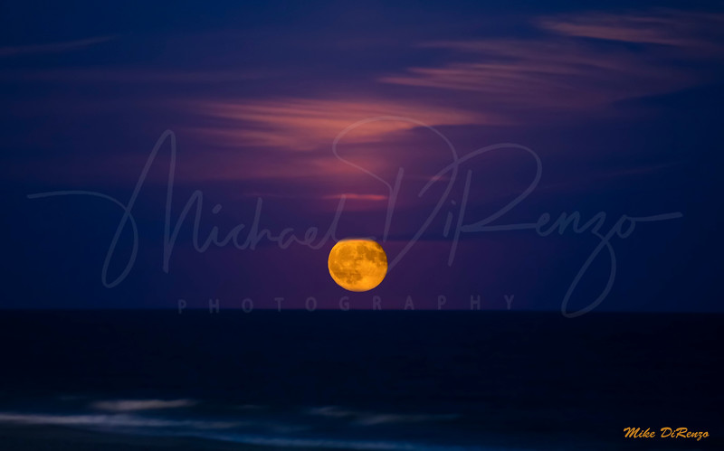 Harvest Moon Over the Ocean  9511 w44