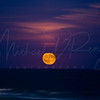 Harvest Moon Over the Ocean  9511 w44