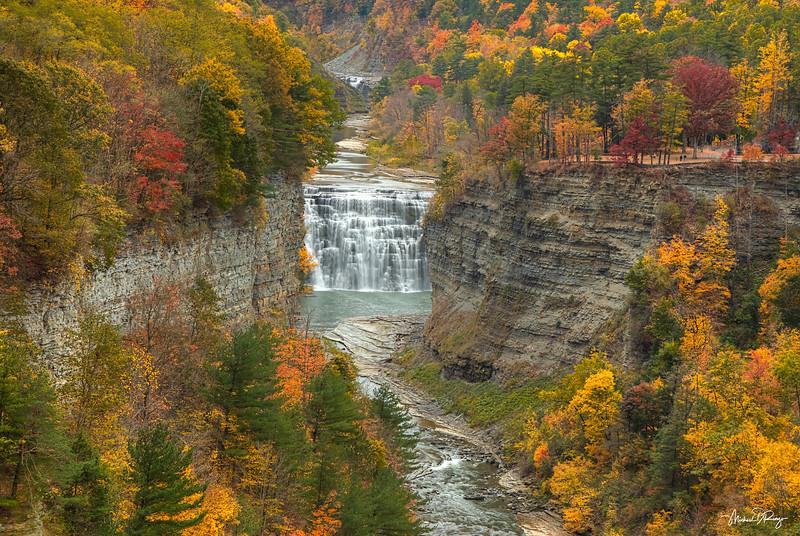 Autumn Splendor 7585 w69