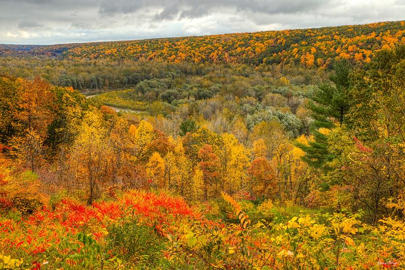Upstate in Autumn 7602 w69