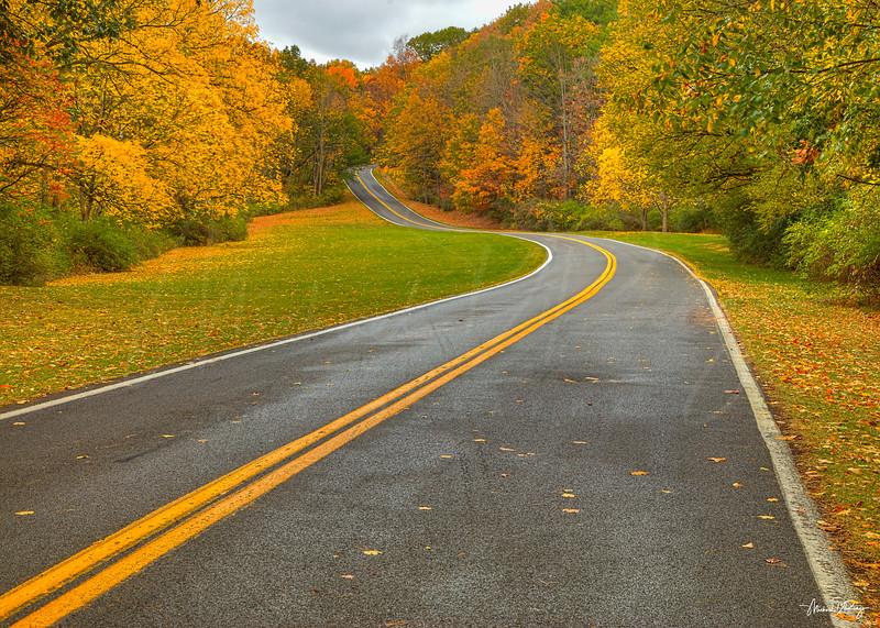 Autumn Highway 7620 w69