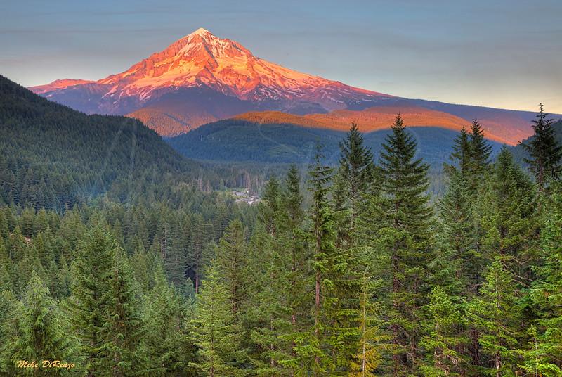 Mt. Hood Alpenglow 9498 w51