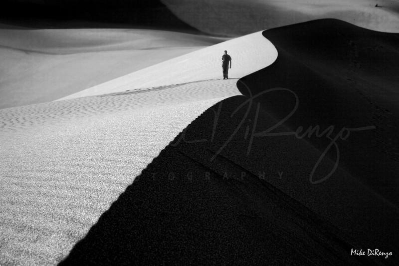 Moonlit Desert Stroll   2044