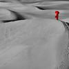 Desert Stroll 0874 w34