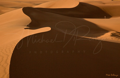 Symphony in Sand