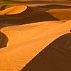 The Desert Wave w12