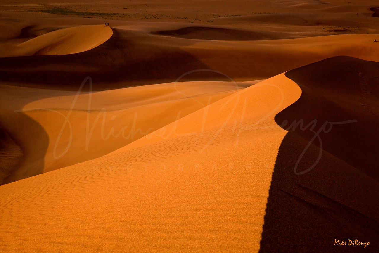 Desert Dawn  2042