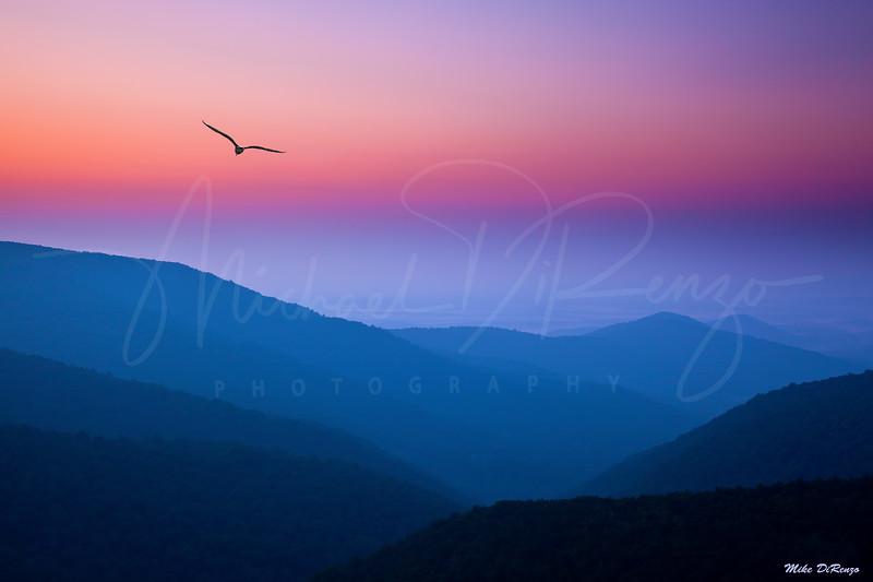 Mountain Dream - Shenandoah National Park Virginia w39