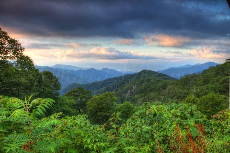 Great Smoky Mountains   7579   w21