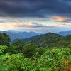 Great Smoky Mountains   7579   w21