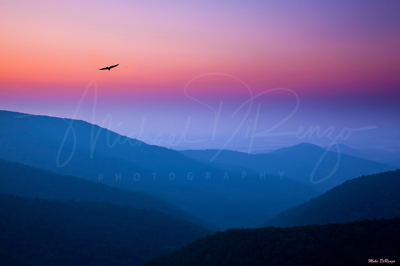 Mountain Dream - Shenandoah National Park Virginia